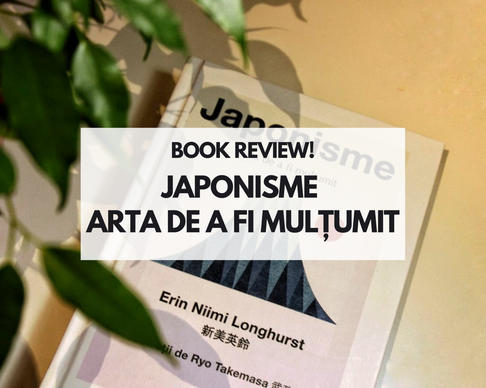 Japonisme, Arta de a fi mulțumit - Review carte
